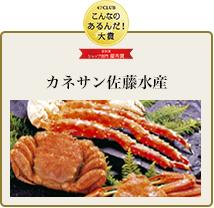 カネサン佐藤水産