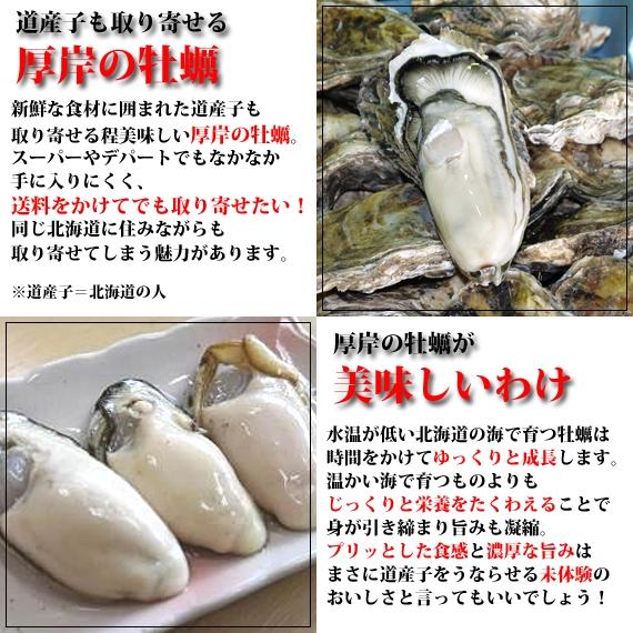 厚岸産 剥き牡蠣(生食用)  500g入【送料無料】