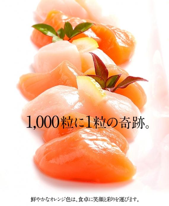 北海道産 ホタテ貝柱(赤玉)1kg 刺身 帆立 1000粒に1粒の奇跡【島の人】