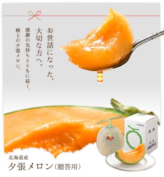 【ご予約受付中】北海道 夕張メロン メロン 1.6kg×1玉 ご贈答用 送料無料 産地直送 赤肉メロン グルメ フルーツ 果物【農作物】