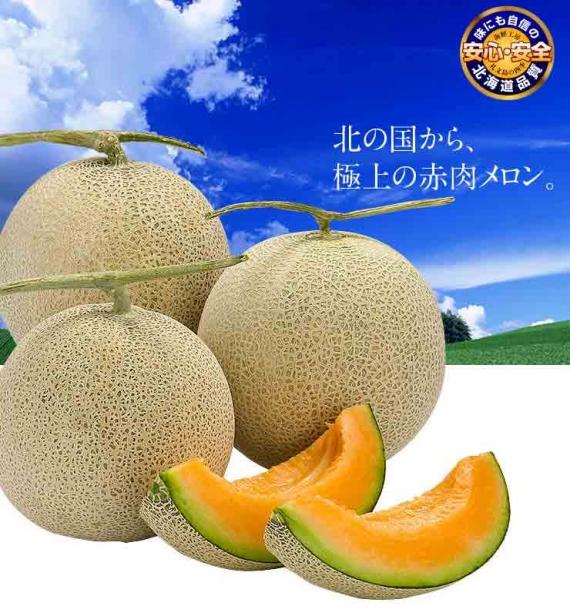 北海道 メロン 3.2kg 2玉【送料無料】【農作物】【島の人】