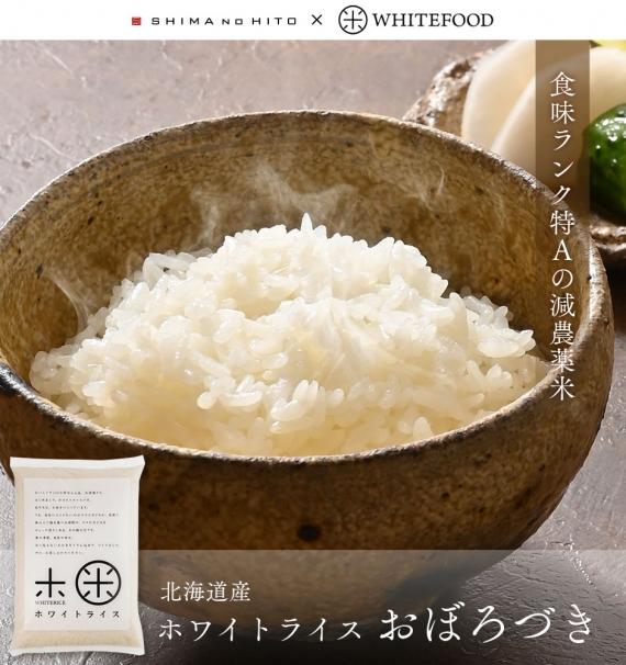 北海道産 おぼろづき 減農薬米 無洗米 10kg   お米 【送料無料】 【島の人】