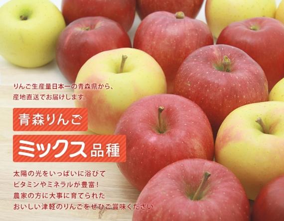 【家庭用】 産地直送! 新鮮な旬の 青森 りんご ミックス 品種 3 キロ(送料別途)