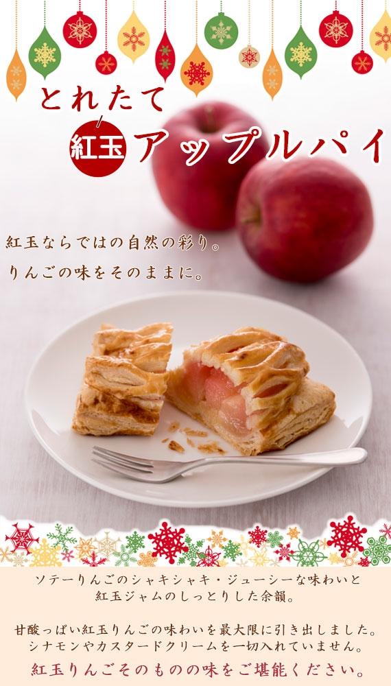 「とれたて紅玉のアップルパイ」10個詰合せ(プレーン・アーモンドキャラメライズ)【一日10セット限定】【送料別】