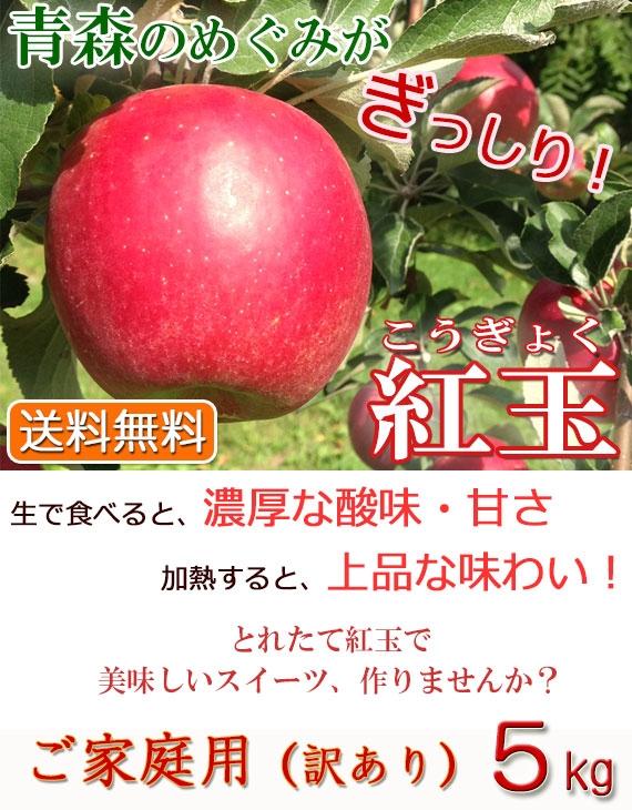 「紅玉」りんご/ご家庭用 5kg(タムラファーム農園直送)【送料無料】
