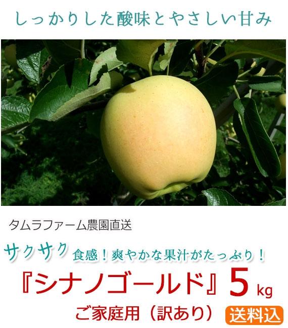 「シナノゴールド」りんご/ご家庭用 5kg(タムラファーム農園直送)【送料込】