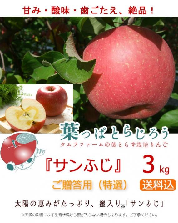 『葉っぱとらじろう』サンふじ 3kg(タムラファーム農園直送 葉とらず栽培りんご)【送料込】