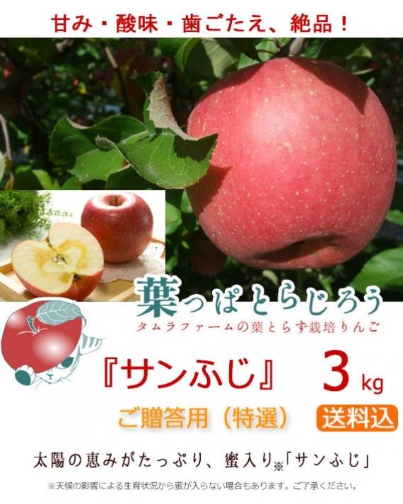 【木箱入り】 『葉っぱとらじろう』サンふじ 3kg(タムラファームの葉とらず栽培りんご)【送料込】
