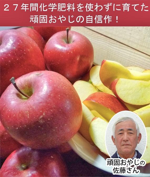 頑固おやじ ・佐藤富士男のりんご 詰め合わせ 贈答用5kg 【送料無料】