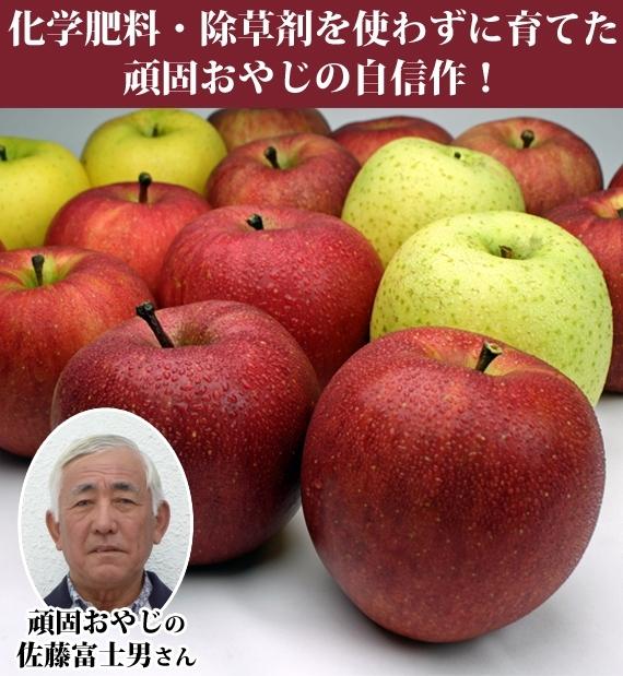 頑固おやじ佐藤富士男渾身の力作 品種おまかせ 季節のりんご シナノゴールド 1段約5kg 【送料込】