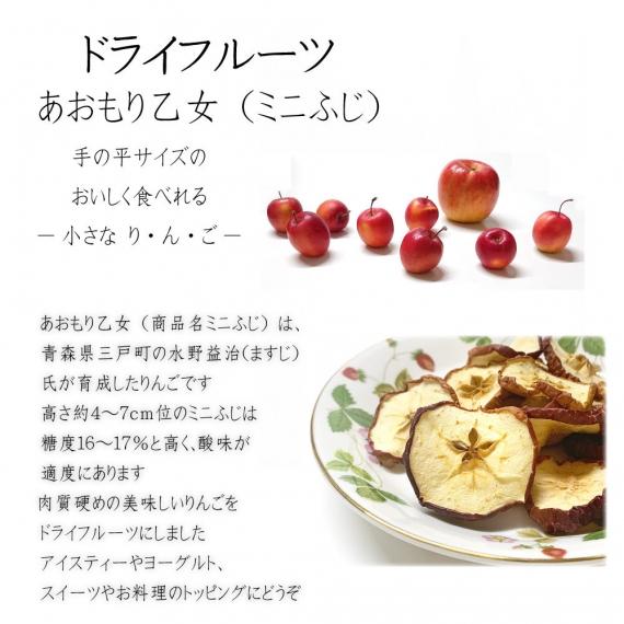 【送料無料】【ミニふじ20g】ドライフルーツ 乾燥りんご りんご 無添加 砂糖不使用 ヨーグルト プレゼント ギフト青森県産 【6046】