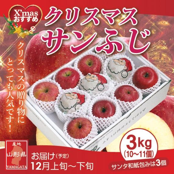 山形県産「クリスマス・サンふじりんご」3kg(10〜11個)