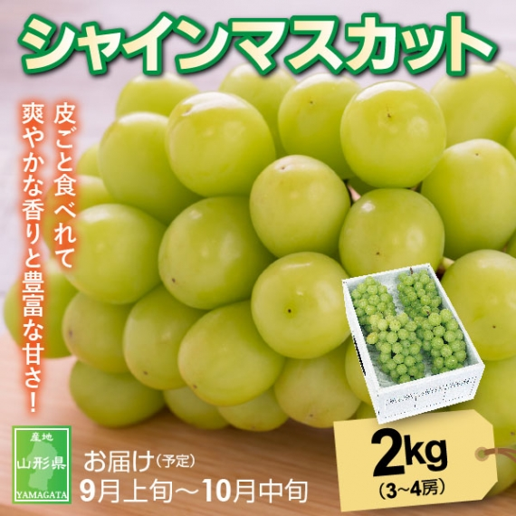 山形県産シャインマスカット 2kg(3〜4房)