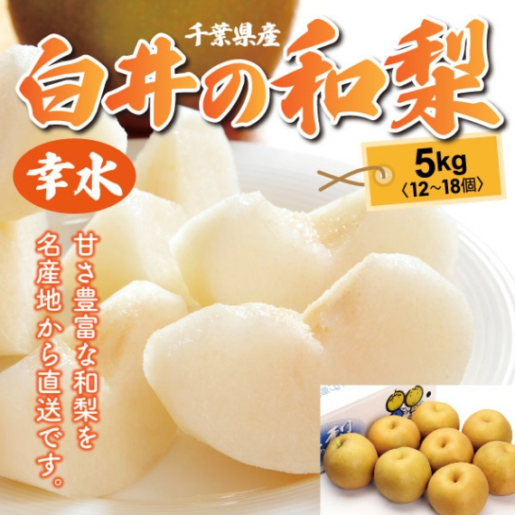 千葉県産・白井の和梨(幸水) 秀品 5kg(12〜18個)