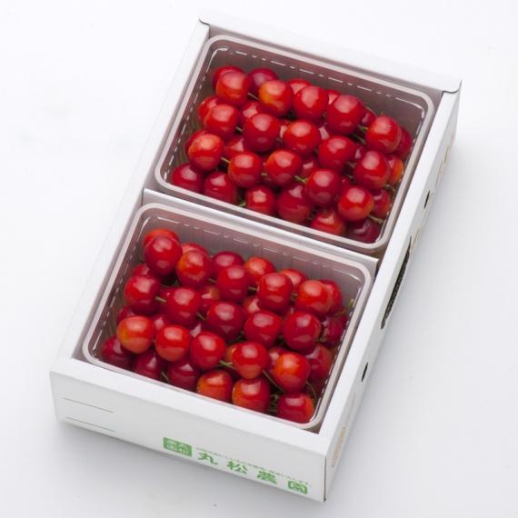【先払い不可】さくらんぼ 紅秀峰1kg(500g×2)バラ詰2L秀品 [0117] 【お中元2020】 【フルーツ】