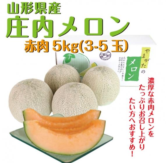 【前払い不可】【送料無料】庄内メロン5kg 赤肉3-5玉 [0214] 【お中元】【フルーツ】