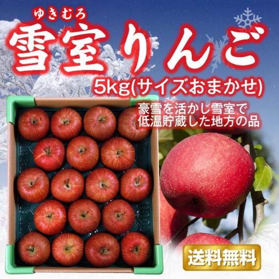 【限定200箱】【送料無料】山形県産「雪室りんご」5kg(サイズおまかせ小玉)お届けは3月上旬頃〜【フルーツ】 [0624]