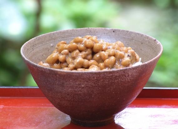 【ギフト・詰め合わせ】グリーンパール納豆こつぶちゃんカップ 10袋贈答箱入