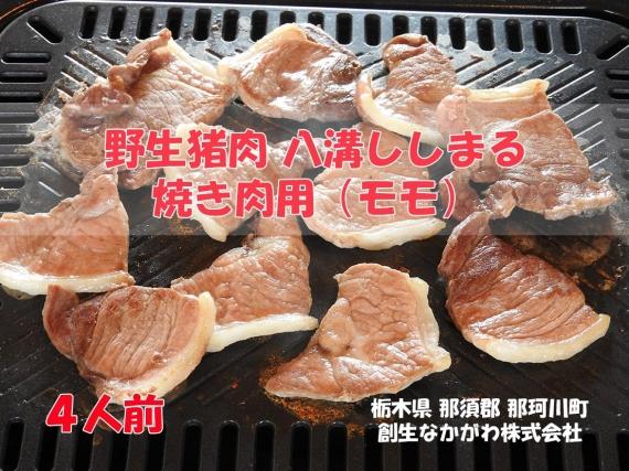 野生猪肉 八溝ししまる 焼き肉用(モモ)4人前(800g)【父の日2020】【グルメ・おつまみ】