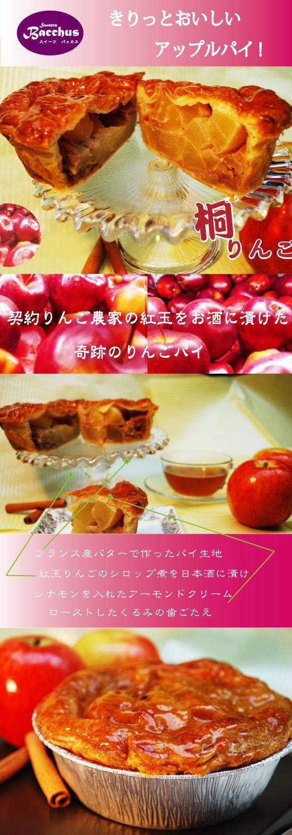 *送料無料*【仏バターと仏粉でサクサクパイ生地/ 日本酒アップルパイ】紅玉りんごとシナモンクリームくるみ入り 奇跡の日本酒りんごパイ「桐りんご」1ホール×3箱セット