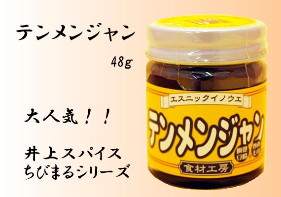テンメンジャン 48g【井上スパイス工業株式会社】