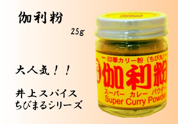 伽利粉 25g【井上スパイス工業株式会社】
