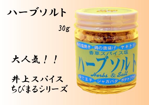 ハーブソルト 30g【井上スパイス工業株式会社】
