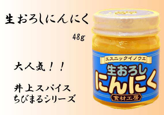 生おろしにんにく 48g【井上スパイス工業株式会社】