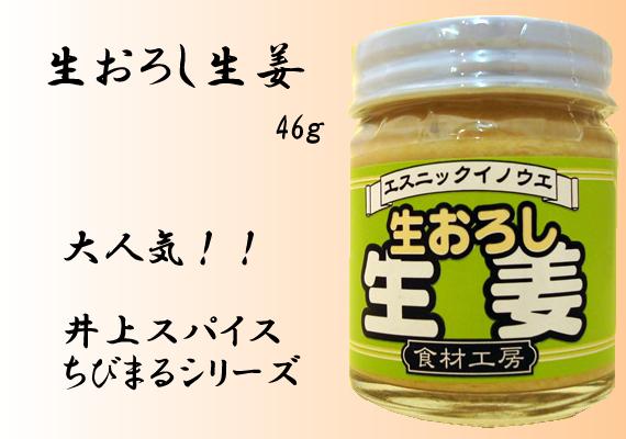生おろし生姜 46g【井上スパイス工業株式会社】