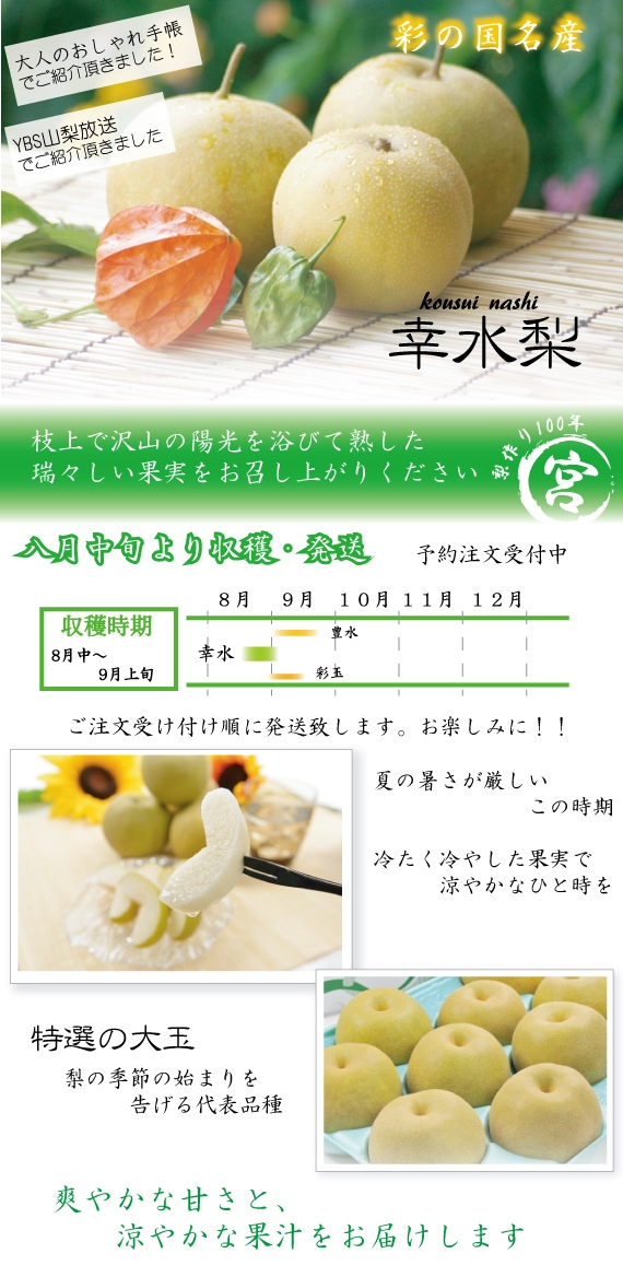 【大人のおしゃれ手帖】で紹介!驚きの逸品! 幸水(こうすい)梨 3kg