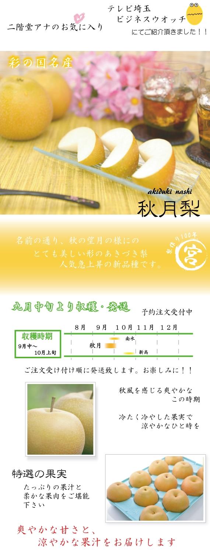 秋の貴婦人 秋月(あきづき)梨 5kg