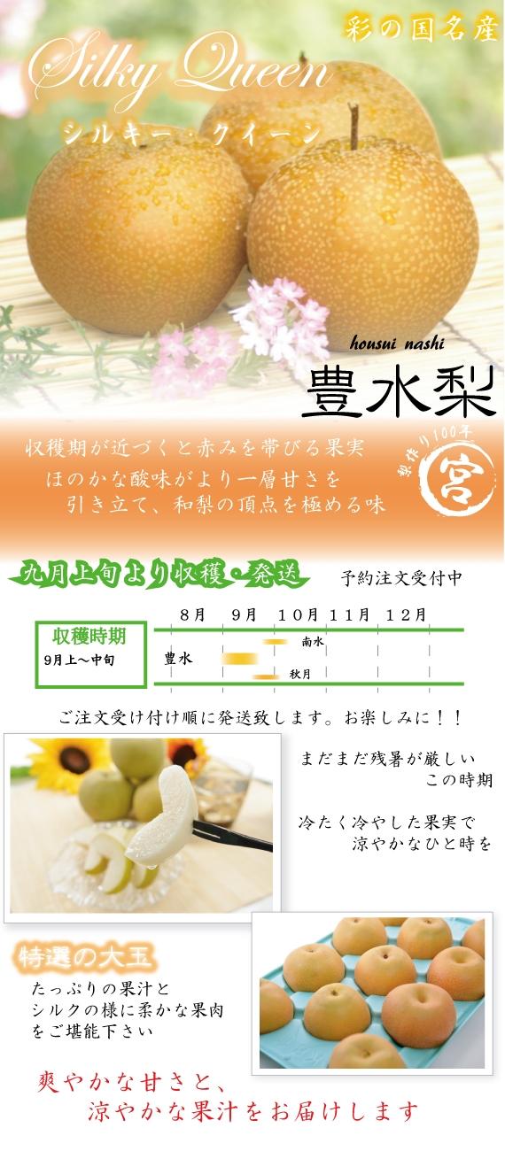 埼玉TV【ビジネスウォッチ】にて紹介! 秋の女王 「シルキー・クイーン」特選豊水(ほうすい)梨 5kg
