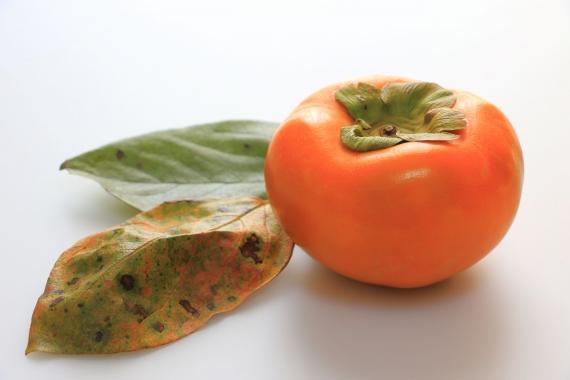 【冷凍・送料込】福岡耳納連山産 冷凍柿【富有柿】3kg【お歳暮2020】【フルーツ】