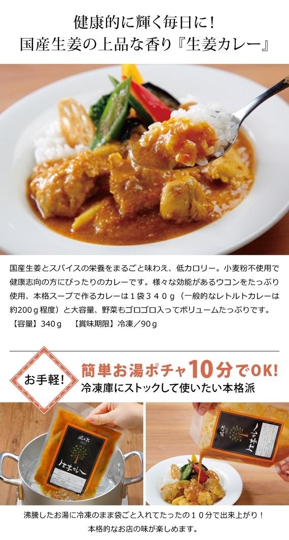 国産【生姜カレー×5袋セット】鶏肉&野菜たっぷりで手作り!グルテンフリー・低カロリー♪人気店の味を冷凍便お取り寄せ
