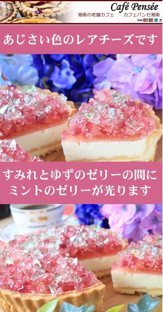 すみれとゆずのゼリーのレアチーズタルトはまるで湘南鎌倉のあじさいのようです!