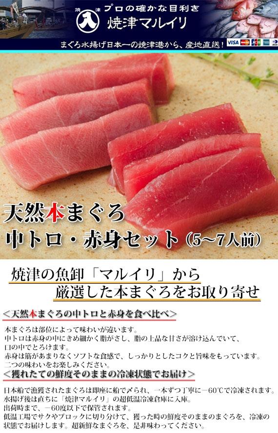 <中トロと赤身の食べ比べ>天然本まぐろ中トロ・赤身セット 【鮮魚・魚介類】【漬魚・魚加工品】