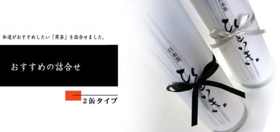 【送料無料】 静岡産 深蒸し茶詰合せ (煎茶・ティーバッグ)