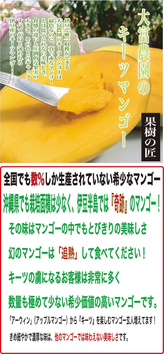 【送料無料】伊豆産、幻のキーツマンゴー 国産数%の希少種 1.3kg~1.5kg