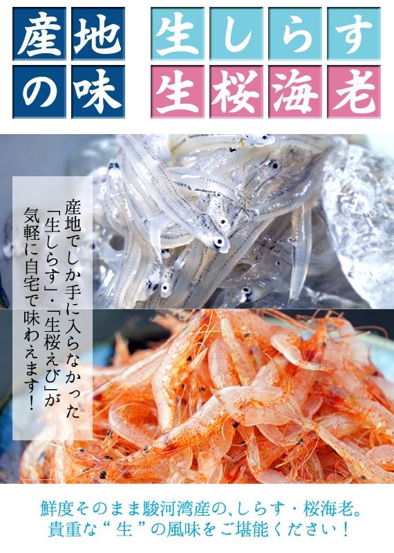 産地の味を!駿河湾産 生しらす&生桜えび/冷凍
