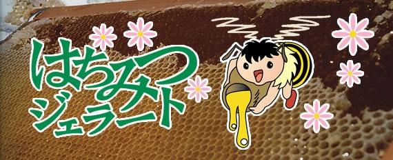 はちみつジェラート(10個入)【ギフト】【アイスクリーム・乳製品】