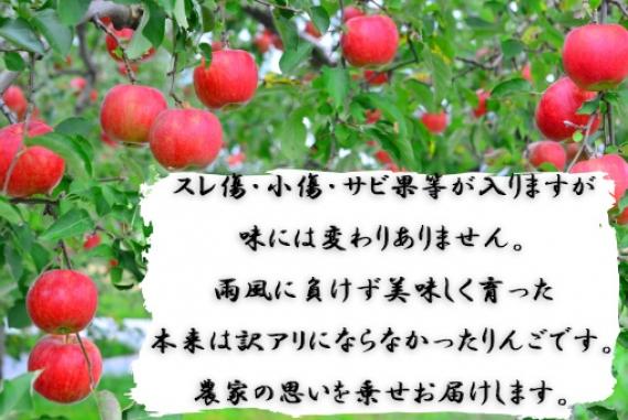 【年末のイチオシ】長野県産 訳ありサンふじりんご 3�s【送料込み】 【お歳暮2019】【フルーツ】