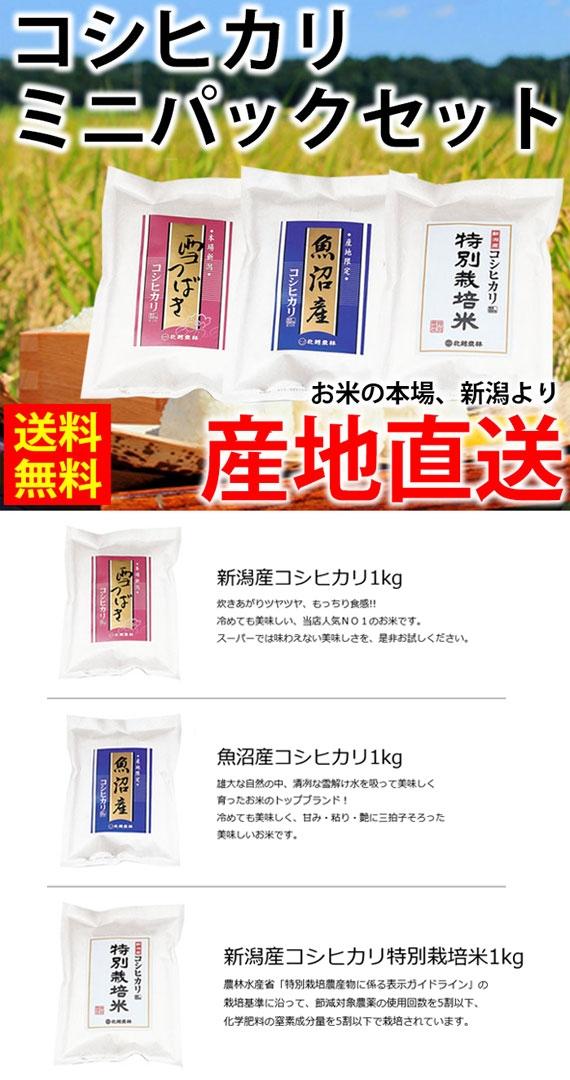 令和2年産 コシヒカリ「ミニパックセット」1kg×3袋 【米・野菜・惣菜】【送料無料】