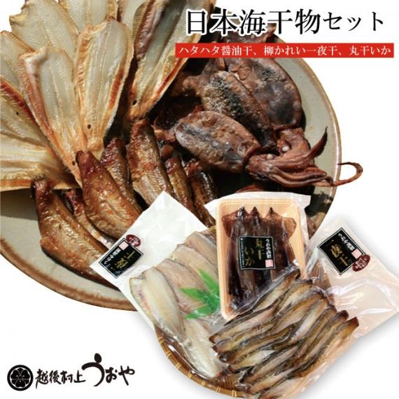 日本海干物セット(ハタハタ/柳かれい/丸干しいか)