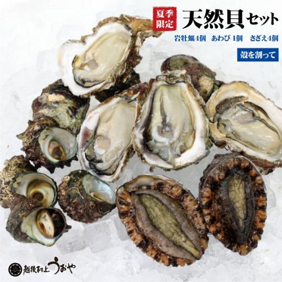 【夏季限定】『日本海産』天然貝セットB《岩牡蠣〈割って〉4個、あわび1個、さざえ4個》