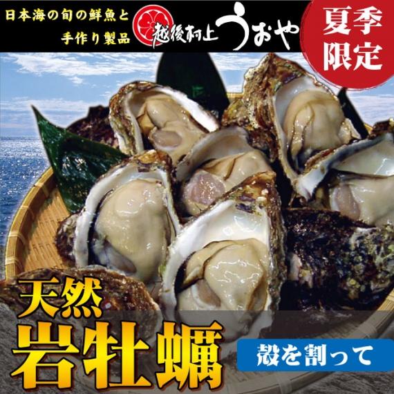【日本海産】天然岩牡蠣(割ってお届け)