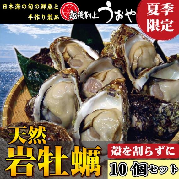 【日本海産】天然岩牡蠣(殻を割らずにお届け)10個セット