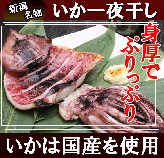 新潟名物 いか一夜干し (塩いか2枚入×1袋)    | 新潟 海鮮問屋 見田元七商店