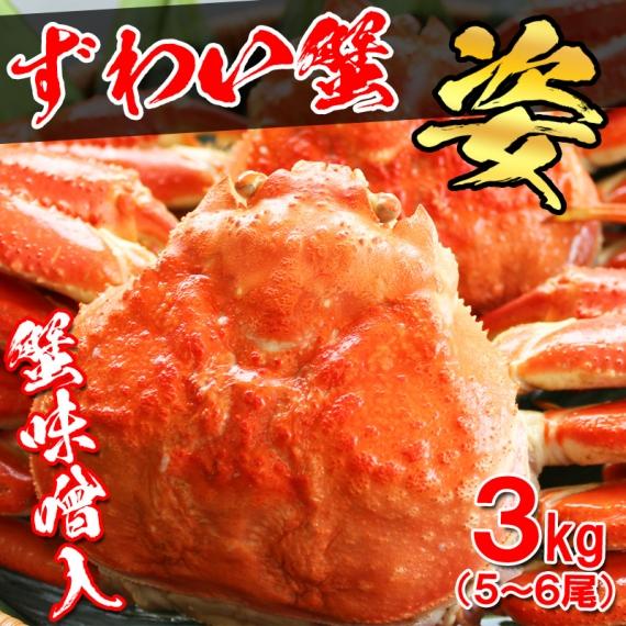 【送料無料】ボイル済ずわい蟹/姿 3�s(5〜6尾入)  【お歳暮2020】【漬魚・魚加工品】【カニ・鮮魚・魚介類】