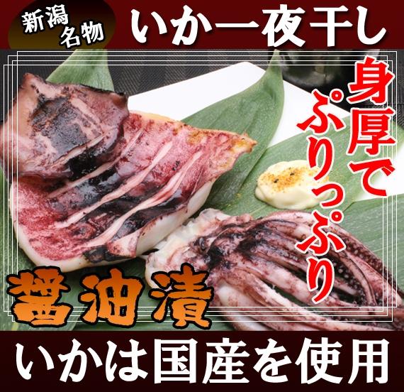 【送料無料】新潟名物 いか一夜干し 醤油漬 4袋セット  【計8枚】 【鮮魚・魚介類】【漬魚・魚加工品】