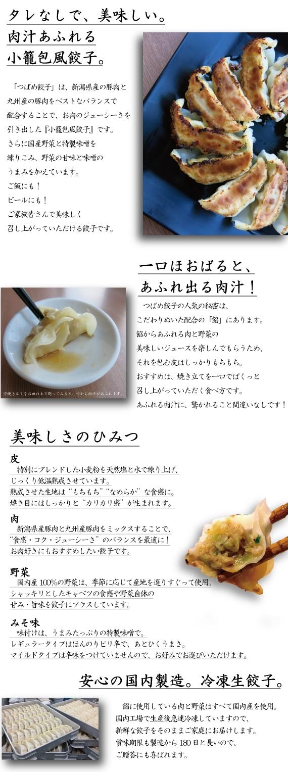 【お試し】【タレなしでうまい!】つばめ餃子(レギュラー・ピリ辛みそ味)20個【精肉・肉加工品】【米・野菜・惣菜】